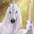 Jan Patrik Krasny bookcovers gallery - Unicorns at Waterfall I.