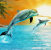 Jan Patrik Krasny bookcovers gallery - Dolphins