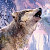 Jan Patrik Krasny bookcovers gallery - Wolves  pack