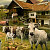 Jan Patrik Krasny bookcovers gallery - Farm