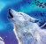 Jan Patrik Krasny bookcovers gallery - White wolves under the full moon 1.